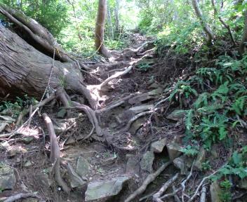 宝珠山 赤松山コース ⑩