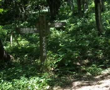 宝珠山 赤松山コース 森林公園③