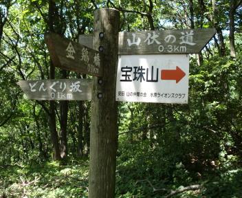 宝珠山 赤松山コース 森林公園④