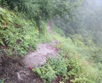 湯の平温泉 山の神平の先②