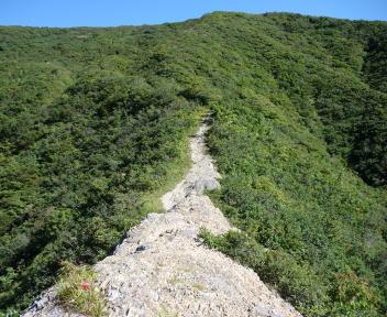粟ヶ岳 下田小俣登山道 午の背