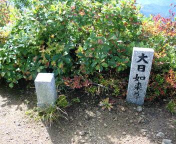 鷲ヶ巣山 中ノ岳~鷲ヶ巣山①