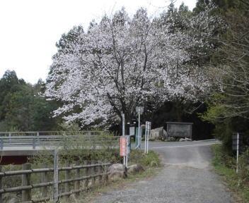 五頭山 五ノ峰コース③