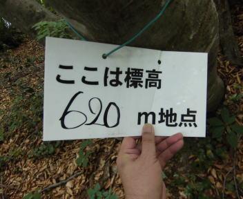 五頭山縦走09