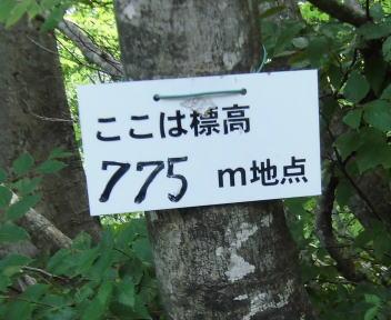 五頭山縦走12