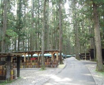 三川観光きのこ園 園内