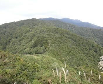 宝珠山山頂から菱ヶ岳方面