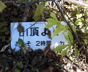 菱ヶ岳12