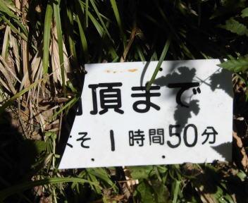 菱ヶ岳17
