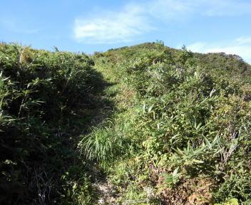 菱ヶ岳19