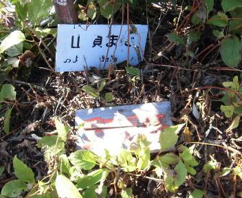 菱ヶ岳22
