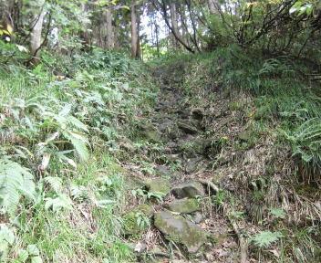 焼峰山04