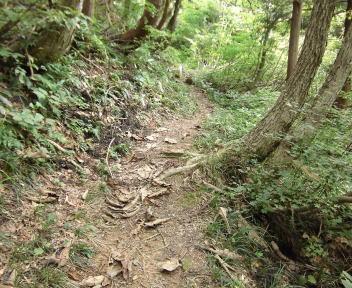 焼峰山05