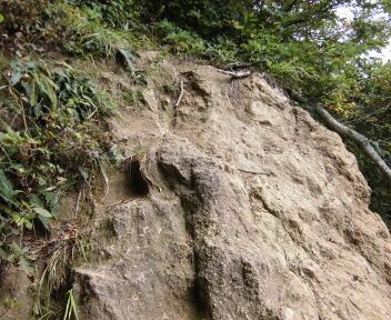 焼峰山12