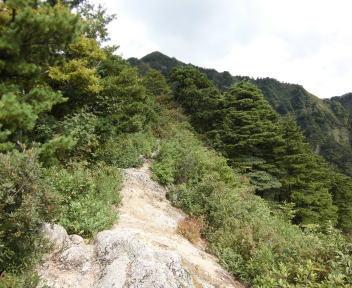 焼峰山18
