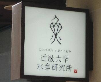 近畿大学水産研究所銀座店 看板