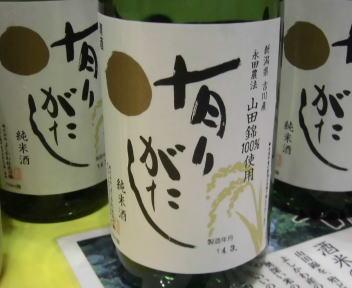にいがた酒の陣 よしかわ杜氏の郷 有りがたし 純米酒