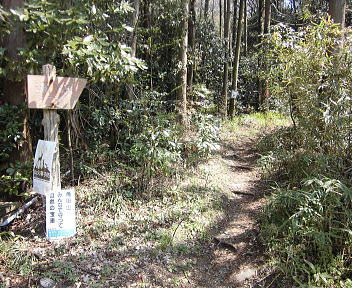 角田山 浦浜コース①