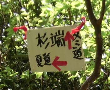 菱ヶ岳~五頭山⑩
