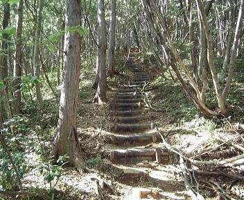 角田山 福井ほたるの里コース_22