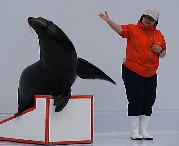 加茂水族館⑨