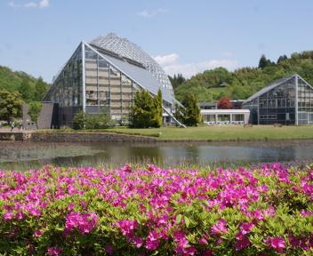 新潟県立植物園①