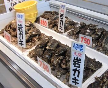 土田水産 岩ガキ