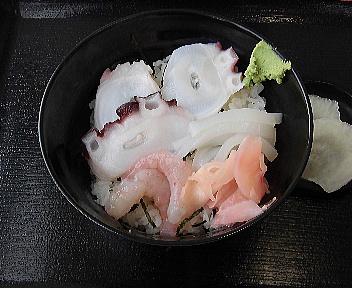 地魚工房 三色丼