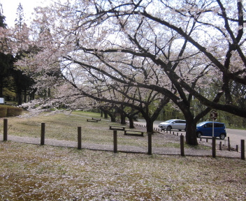 秋田県民の森