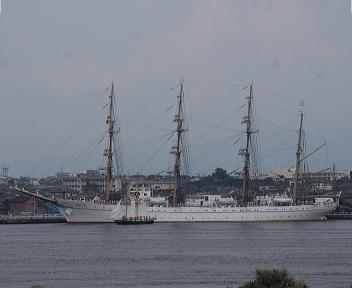海王丸 帆船Ami