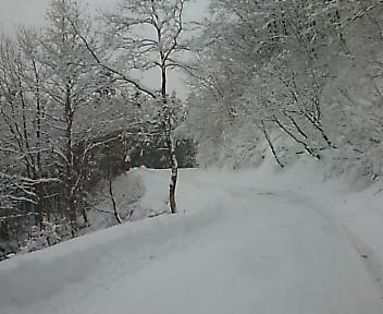 鶴の湯 山道