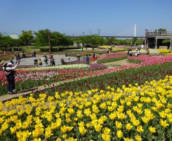 Photo_805